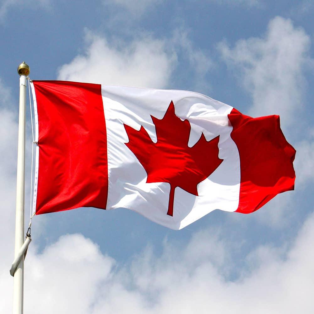 workhaus-spotify-playlist-new-canadian-music